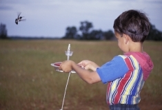 Child holding hummingbird feeder with hummer