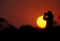 Birder at sunset or sunrise