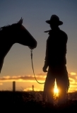 Cowboy with horse at sunset