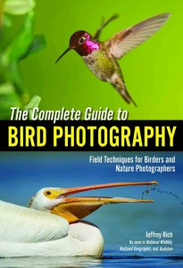 cover_rich_bird_003-1 web site 3