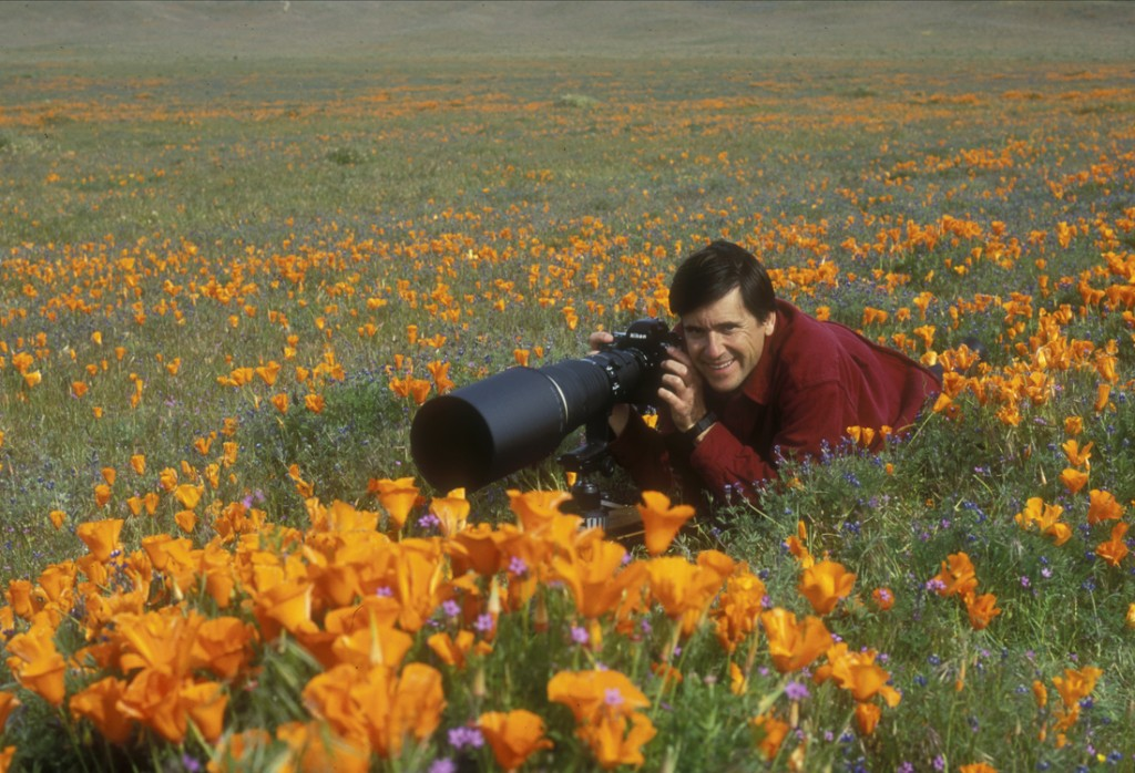 jeff in poppies